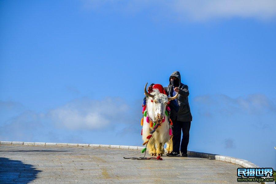 冬季青海摄影团之艾肯泉-茫崖翡翠湖-俄博梁雅丹-网红公里-察尔汗盐湖摄影团